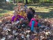 Leaf pile play