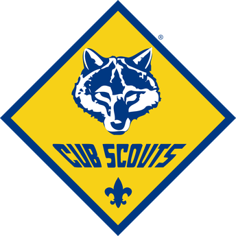 Cub Scouts Meeting: