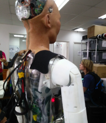 Sophia the Robot from a different angle