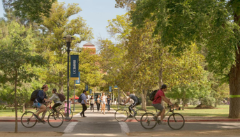 University of California, Davis (UCD)