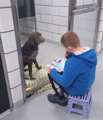 Dylan Reading to This Lucky Pup