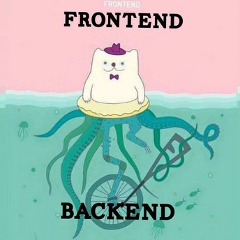 FrontEnd or BackEnd?
