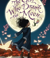 Newbery Medal - the highest U.S. award for children's literature