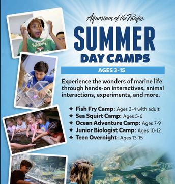 Aquarium Summer Day Camps