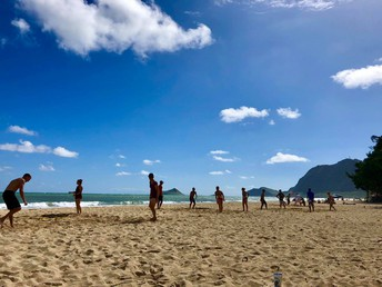 Tweedle Beetle Beach Battle