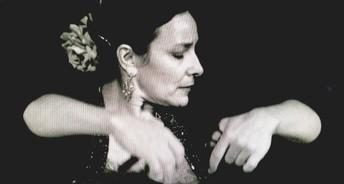 Maritel Centurion Flamenco  Canada