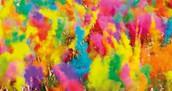 Color Run Details