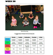 Mindful Classrooms--Week 36