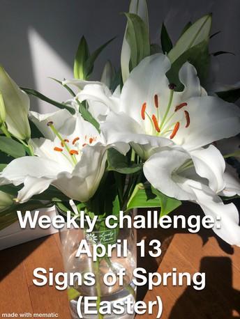 Spirit Days & Mrs. Boehm's Weekly Challenge