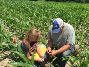Crops Science Investigation (CSI)