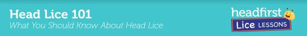 Learn more about head lice here.
