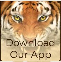 ¡Mantente informado con nuestra aplicación!