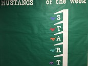Mustangs of the Week