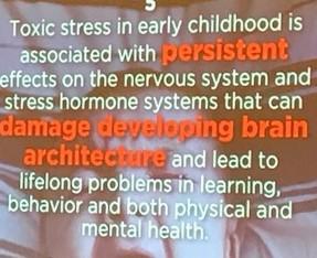 A calm adult = less toxic stress