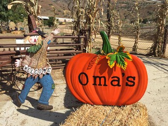 Oma's Pumpkin Patch - Community Connections Trip