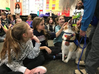 Kaz with Loving Paws visits our 4th and 2nd Graders this week!