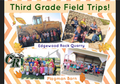 Third Grade Explorations
