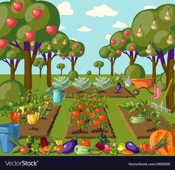 Summer Volunteer Opportunity - the Garden Needs Your Help!