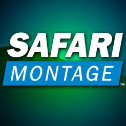 Stop 3: Safari Montage