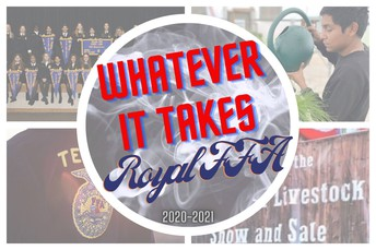 Royal FFA District Contest Results