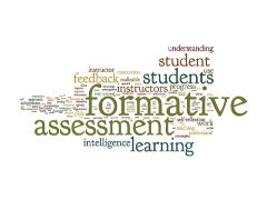 Effectively Using Formative Assessment in the Classroom