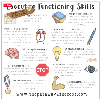 Executive Function Skills