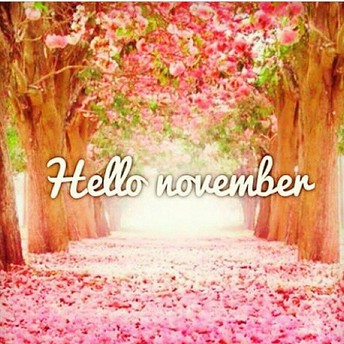 What`s Happening in November?