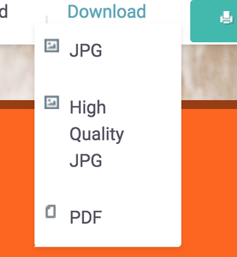 4. Save to PDF Option