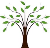 Translation Tree