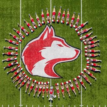 aerial shot of cheerleaders making circle on football field around Husky head center field