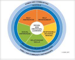 Lecciones de  Aprendizaje Social Emocional de D303