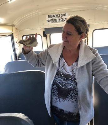 Bus Find