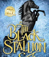 Choice 4: The Black Stallion, by Walter Farley