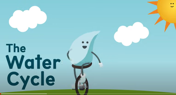 Activity 2 -- What is the water cycle?