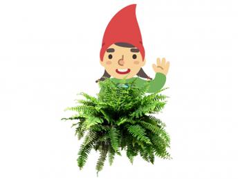 LO Parks Gnome Hunt: