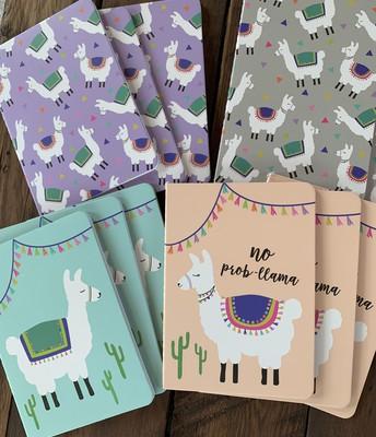 LLama mini notebooks