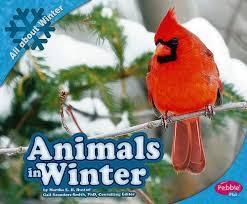Animals in Winter by Martha Rustad