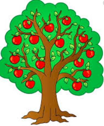 PTA Apple Tree