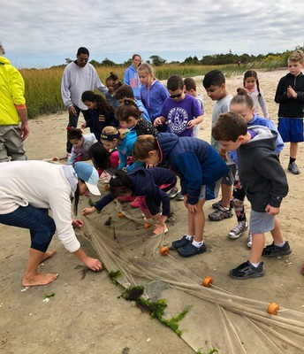 Gr. 2 Field Trip at the Beach to Collect Sea Creatures