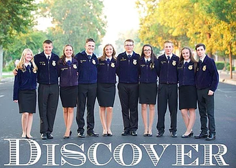 Behind the Scenes at Minarets: FFA Officer Elections