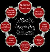 CHAMPPS Team Spotlight - Health Education, Physical Education and Physical Activity, School Health Services