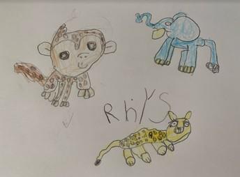 Rhys draws his favourite animals