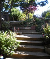 The Stairway In