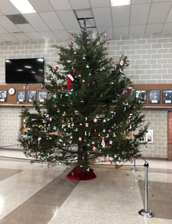 Tree Tradition