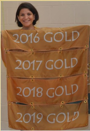 RSPS PBIS GOLD AWARD...5th Time in a Row!
