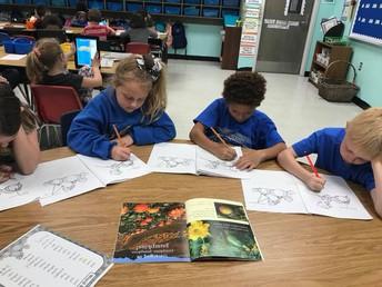 Woods 2nd Grade Class Explores Pumpkin Theme