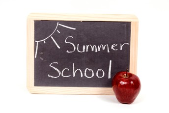 DISTRICT OF WAUKESHA SUMMER SCHOOL