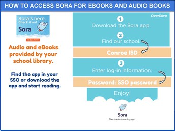 How to Access Sora