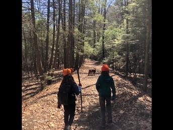 Branch Brook trail