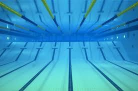 UM Swim Team